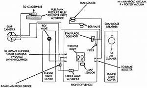 Im In Need Of The Diagram Of The Vacuum Hoses For A 95
