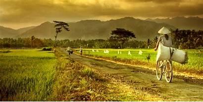 Desa Pedesaan Masyarakat Ekonomi Indonesia Dan Pembangunan