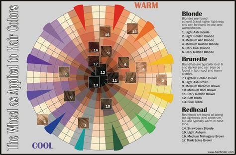 Cosmetology Color Wheel Chart