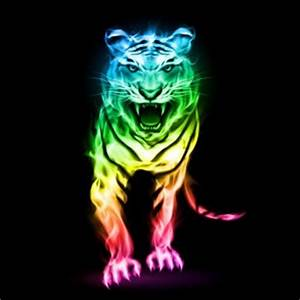 Neon Animal Backgrounds