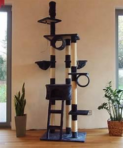 Arbre A Chaton : fabriquer un arbre a chat ~ Premium-room.com Idées de Décoration