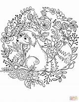 Coloring Raccoon Pages Printable Animals Raccoons Drawing Creative Forest Categories sketch template
