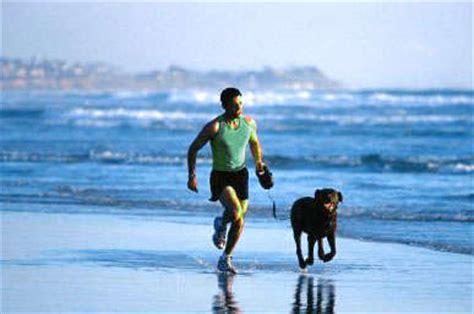 alimentazione sportiva ciclismo adessopedala alimentazione e diete sportive per il