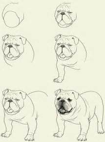 How to Draw Bulldog Dogs