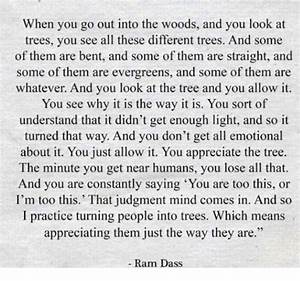 When You Go Out Into the Woods and You Look at Trees You ...