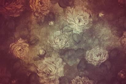Backgrounds Floral Desktop Pixelstalk