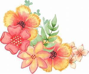 Floral, Decoration, Embellishment, Watercolor