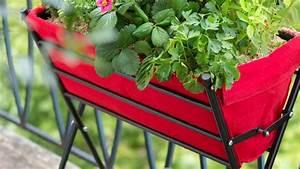 Bac A Fleur Balcon : bac a fleur balcon pas cher ~ Teatrodelosmanantiales.com Idées de Décoration