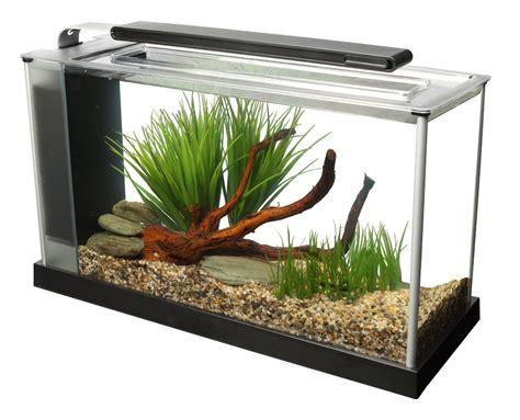 fluval tanks fluval spec v aquarium kit 5 gallon about betta fish