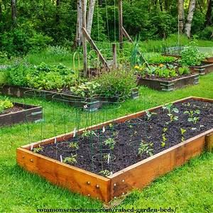 Raised, Garden, Beds, U2013, 5, Tips, For, Surefire, Success