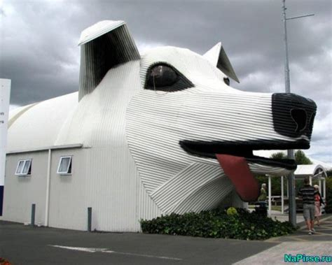 15 Interesting And Unusual Houses To Live In