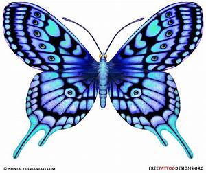 Blue Butterfly Drawing | blue tattoo | 60 Butterfly ...