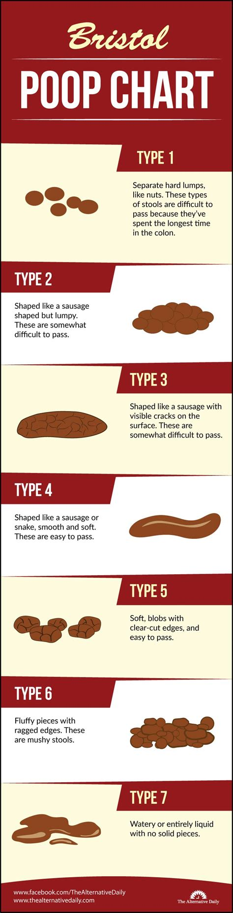 Bristol Poop Chart Which Of These 7 Types Of Poop Do You. Entrance Test For Nursing School. Vanille Patisserie Chicago New Car In Toyota. Divorce Lawyers In Pittsburgh Pa. Academic Article Writing Keepers Self Storage. Add Treatment In Children Kwik Kar Carrollton. Ssl Certificate Reviews Iron Mountain Weather. Maryland Business Search Home Digital Phones. Buy Consumer Email List All Recipes Dog Treats