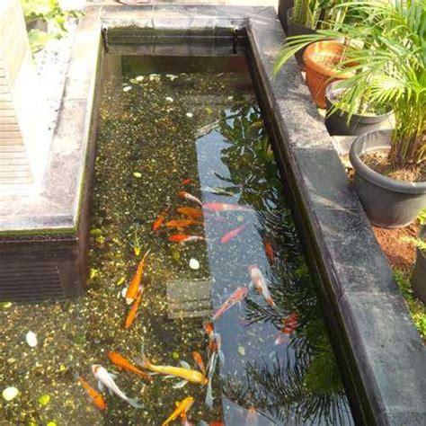 filter air kolam ikan hias oleh berkah bening kreasi  depok