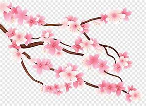 Diagram Branch  Pink Spring Branch  Pink Cherry Blossom