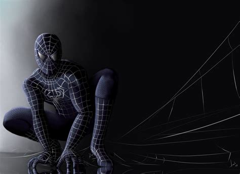 amazing spiderman wallpaper hd  pc