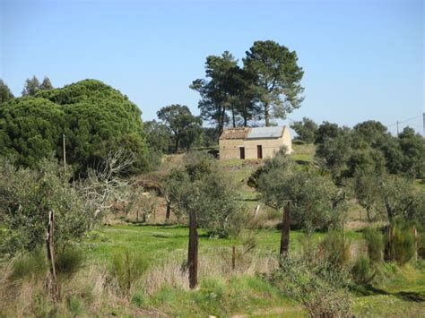 algarve immobilien kaufen immobilien grundst 252 ck kaufen in portugal portugalissimo