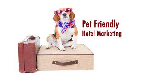 Pet Friendly Hotel Marketing & Pet Friendly Hotel Chains