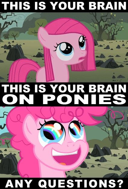 Ponies Meme - 71 best images about my little pony mlp on pinterest pinkie pie rainbow dash and cosplay