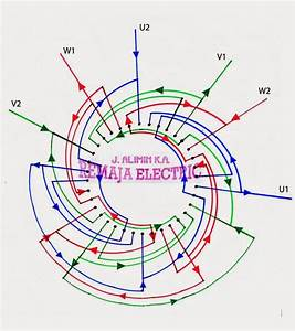 110  220 Volt 6 Pole Induction Motor Wiring Diagram