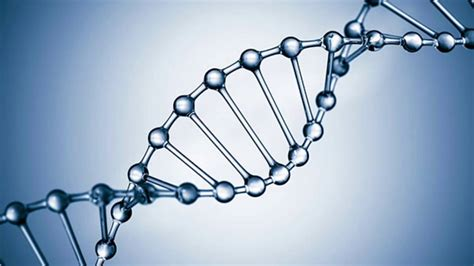 Dna Analyst Forensic Dna Analyst Gold 4 Youtube