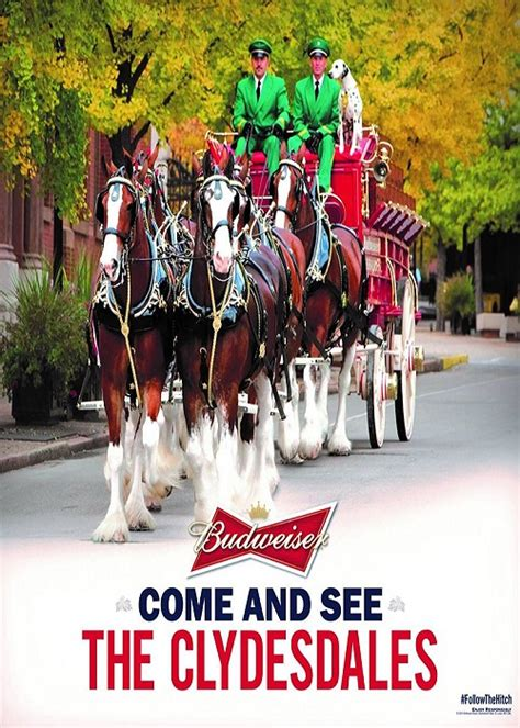 Boat Financing Vystar by Budsweiser Clydesdales Headed To Jacksonville For