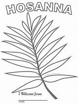 Palm Sunday Coloring Branch Leaf Pages Template Activities Crafts Easter Lesson Children Hosanna Drawing Printable Catholic Craft Sheet Bible Preschool sketch template