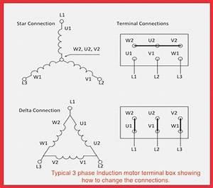 220 3 Phase Wiring Diagram  U2013 Vivresaville Com