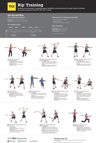 trx exercise chart rip training charts posters