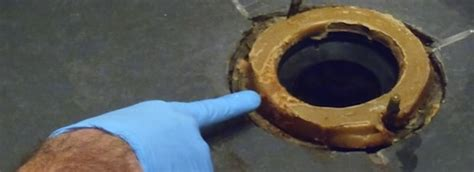 wax rings gogo rooter plumbing