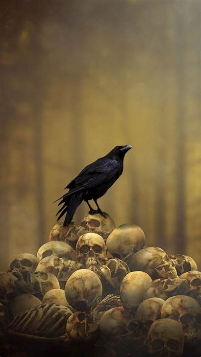 Raven Fantasy Skulls Dark Gothic Iphone Bird