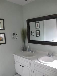 sherwin williams sea salt and rainwashed With sea salt paint bathroom