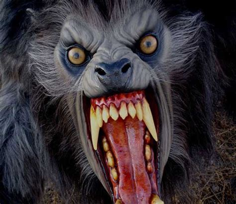 werewolves arent real otherworld mystery