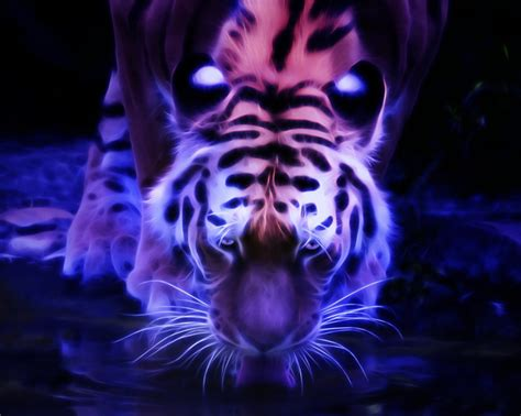 Animal Planet Live Wallpaper - animal wildcats animalplanet animalphotos pictures