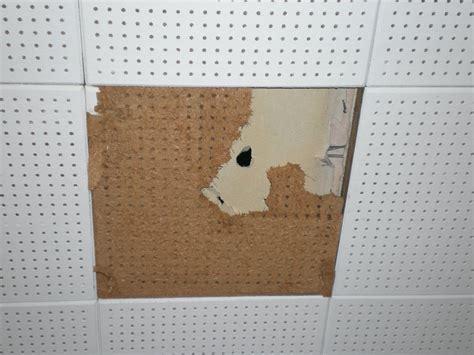asbestos ceiling tiles loccie  homes gardens ideas