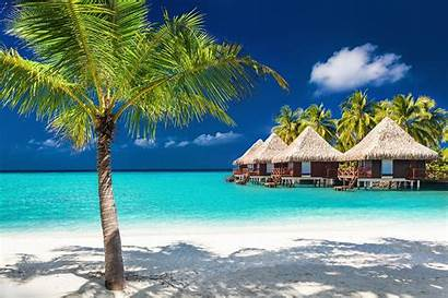 Luxury Tropical Island Vacation Water Palm Trees
