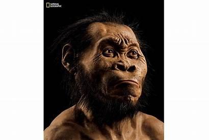 History Humans Discovered Csmonitor Naledi Homo Illustration