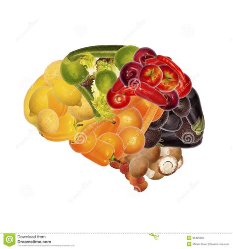 voedsel voor de hersenen