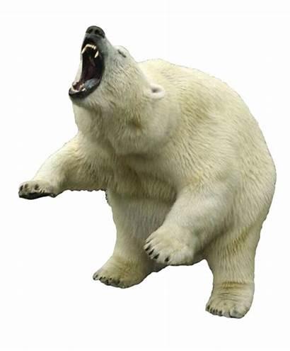 Polar Bear Clipart Transparent Freepngimg Pluspng Animals