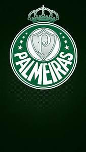Fotos, Do, Palmeiras, Para, Papel, De, Parede, Para, Celular