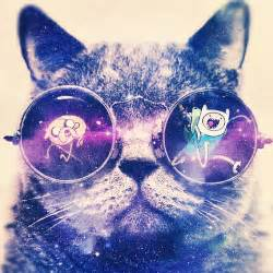 galaxy cat space cat with galaxy glasses pics about space