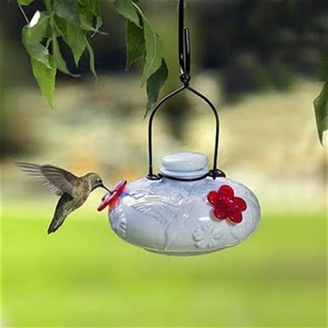 diy hummingbird food homemade hummingbird nectar recipe natural hummingbird diet