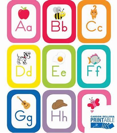 Alphabet Cards Printable Board Bulletin Teach Pk