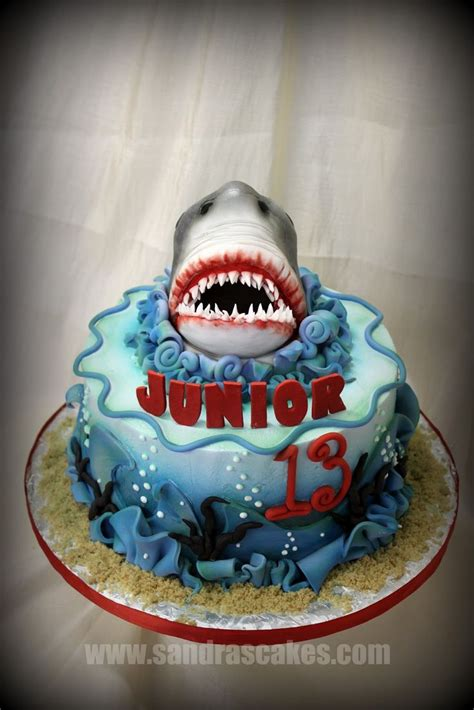ideas  shark cake  pinterest shark