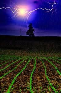Lightning Strike Corn Field