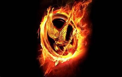Hunger Games Hungergames Fanpop Mockingjay Desktop Cool