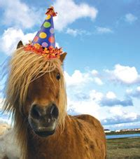 Birthday Milestones - Unicorn Trails