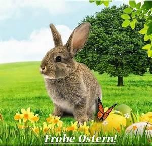 Frohe Ostern Bilder Kostenlos Herunterladen : sch ne bilderseiten im internet frohe ostern osterbilder ~ Frokenaadalensverden.com Haus und Dekorationen