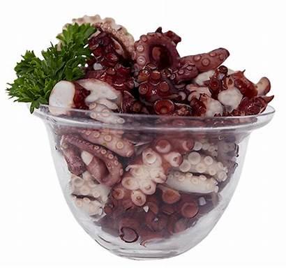 Octopus Salad Marinated Select Seafood Sizes Garlic