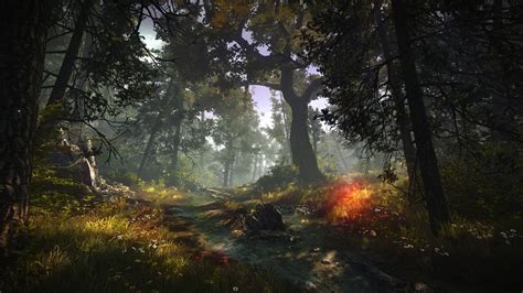 Nature Wallpapers 2 by The Witcher 2 Assassins Of Forest Nature